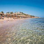 sharm-el-sheikh-particolare-spiaggia_595